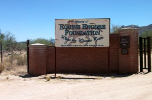 Equine Encore Foundation is a retired racehorse facility in Tucson, Ariz.